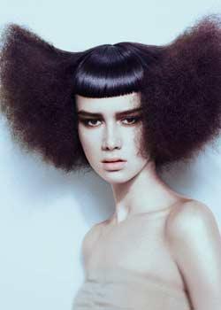 © PAUL GORDON ARTISTIC TEAM HAIR COLLECTION